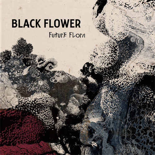 BlackFlower-FuturFlaura.jpg